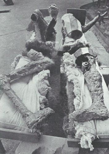 Planche sciée » - Polyester, fer, objets (conservé en partie), 1974